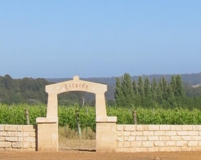 Picardy Wines - NTL Quarry Blocks (1)