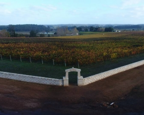 Picardy Wines - NTL Quarry Blocks (4)